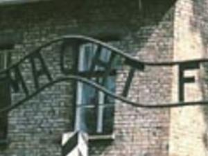 Auschwitz - Birkenau Photos