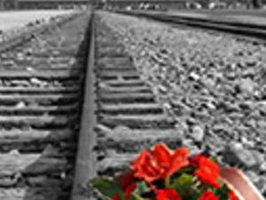 Auschwitz - Birkenau Memorial and Museum Photos