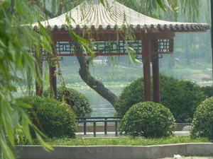 Beijing Lama Temple, Panda Garden and Ancient Altar Day Tour Photos