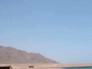 Between Desert & Sea, 2 day camel and jeep safari Photos