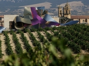 Bilbao and Rioja wines Photos