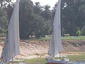 Budget price tours in Egypt-3 nights Nile cruise Luxor/Aswan from Cairo by train Photos