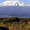 Climb Mt. Kilimanjaro via Rongai Route for 6 days / 5 nights