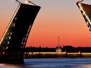 Connoisseurs of St. Petesburg Photos