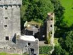 Cork, Blarney Castle, the Queenstown Story, Killarney,  the Ring of Kerry (2 days)
