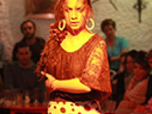 Cuevas los Tarantos (Flamenco Show): Show with tapas dinner, drink and transport Photos