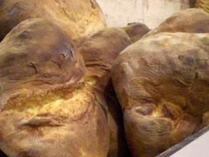 Discover Altamura: Half-Day bread and focaccia tour tasting Photos