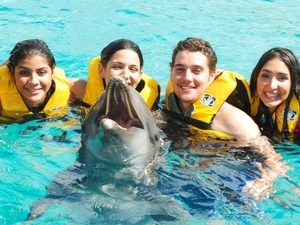 Dolphin Swim at Ocean World Adventure Park Photos