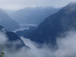 Doubtful Sound Wilderness Cruise from Queenstown Photos