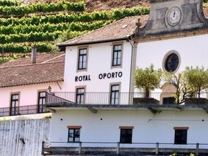 Douro Valley Small-Group Tour with Wine Tasting, Portuguese Lunch and Optional River Cruise Photos