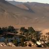Dune Buggy & Sandboarding Tour