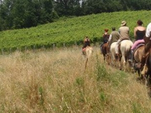 Easy horse riding excursion in Tuscany, around the historical town Lari Photos