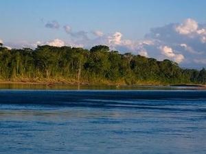 Ecomagic: Jungle Tour Photos