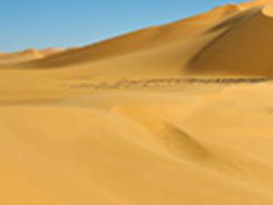 Evening Dubai Desert Safari (Dune Dinner Safari) Photos