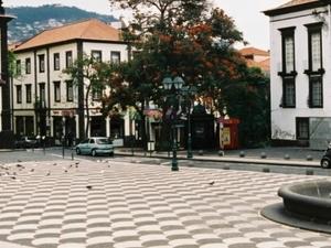 Excursion in Funchal Photos