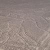 FD Nazca Lines