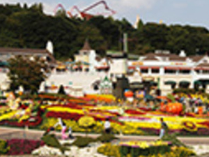 Full Day Admisson To Everland Theme Park Photos