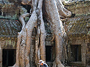 Full Day Banteay Srei - Angkor Complex Photos