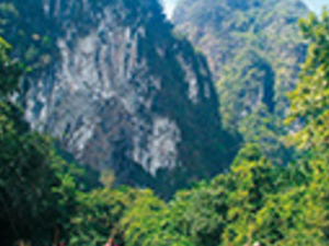 Full Day Khao Sok Bamboo Rafting (KS1B) Photos