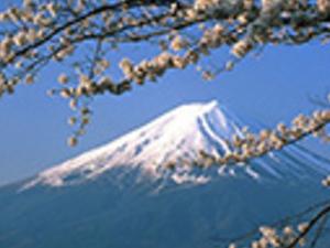 Full Day Mt.Fuji And Hakone Tour Photos