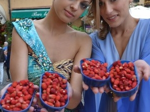 Gastronomic Tour to Castelli Romani with private guide by car Photos