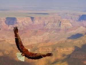 Grand Canyon West Rim Deluxe Bus Tour Photos