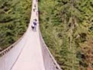 Grouse Mountain and Capilano Suspension Bridge Tour Photos