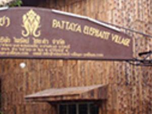 Half Day Elephant Village And Show Photos