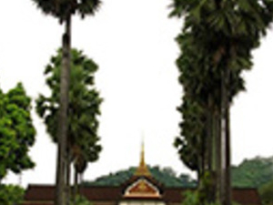 Half Day Museum Of Luang Prabang From Hotel Inside Luang Prabang City Only Photos