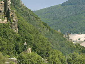 Half Day Tour to the Rhine Valley Photos