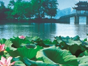 Hangzhou Picturesque Day Tour - West Lake, Ling Yin Temple and More Photos
