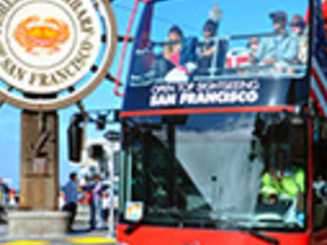 Hop On Hop Off Bus Tour and Aquarium of the Bay Photos
