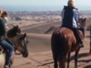 Horseback Riding, Tour in Private Photos