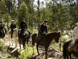 Horseback Riding Photos