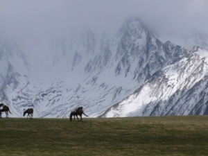 Horseback trekking in the Great Caucasus in the Tusheti National park Photos