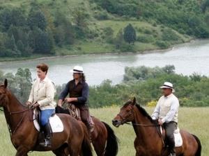 Horse Riding Photos