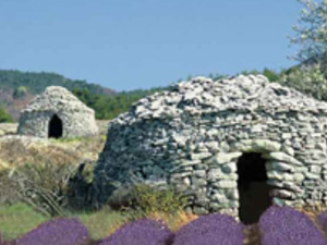Lavender full-day tour from ARLES Photos