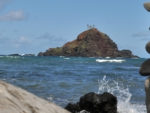 Light Chaser Half Day Island Photo Ecotour Photos