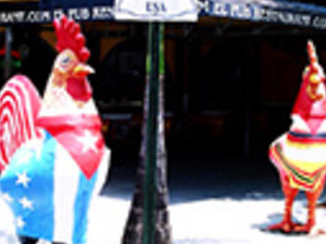 Little Havana Food Tour Photos