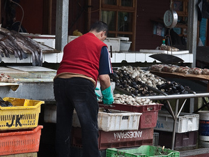 """Living the """"Real Experience with Locals""""  Walking into the Local Markets & Neighborhood  - Chile Photos"""