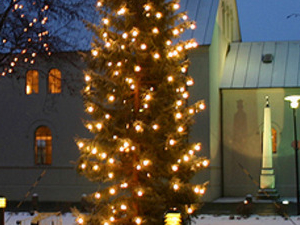 Luxury Cristmas evening tour of Reykjavik Photos