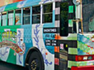 Magic Bus Tour Photos