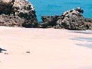 Marietas Island Photos