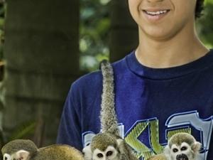 Monkey Land Photos