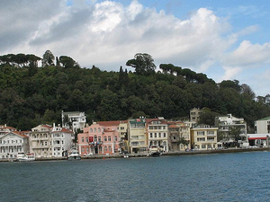 Morning Bosphorus Cruise Tour Photos