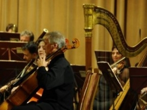 New Year'S Symphony Concert Photos