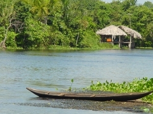 Orinoco Delta (3 days) - Indian Villages and Lush Green Forests