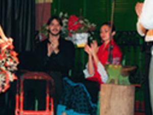 Palacio Andaluz flamenco show Photos