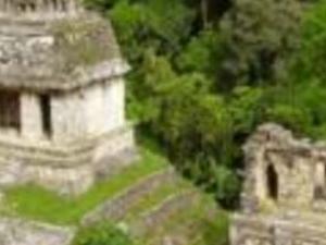 Palenque Archaeological zone Photos