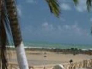 Pipa Beach Photos